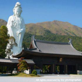 tsz-shan-monastery_meitu_9_meitu_33-280x280